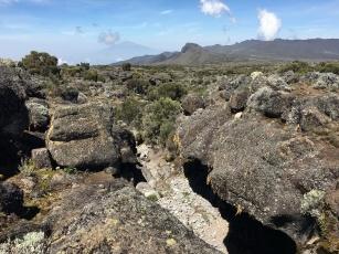 The road to Uhuru peak